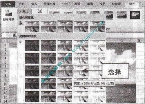 在Excel2010中设置图片属性