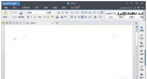 WPS文字怎么设置页面分隔符