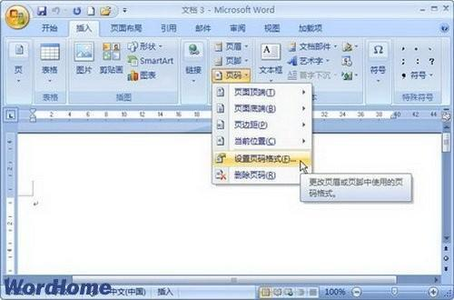 Word2007文档中设置页码格式图文教程