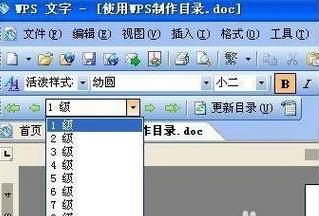wps文字自动生成的目录的格式怎么设置